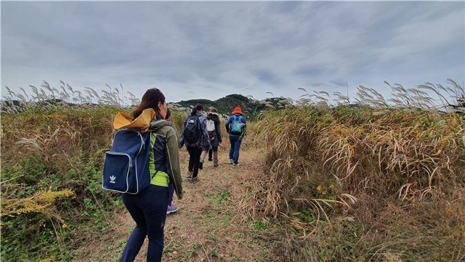세종시 강길 산길 탐방을 하는 세종 시민들.