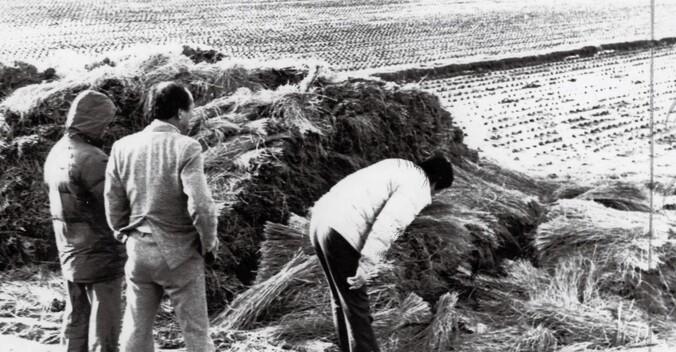사상 최악의 경찰 미제사건으로 남아 있는 경기도 '화성 연쇄살인사건'의 유력한 용의자가 확인됐다. 경기남부지방경찰청은 이 사건의 유력한 용의자로 현재 수감 중인 ㄱ(50대)씨를 특정했다고 밝혔다. 사진은 1987년 1월 5차 사건 현장인 화성 황계리 현장을 경찰이 살펴보고 있는 모습. 연합뉴스