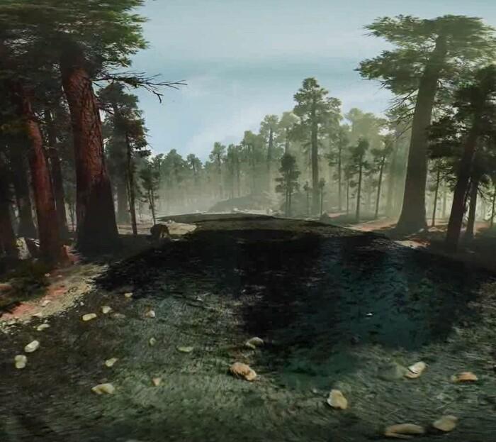 '긴장이완 훈련' 체험 영상. 가상현실로 숲을 체험하면서 호흡 훈련을 할 수 있다. 전홍진 교수 제공