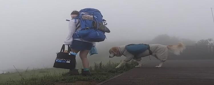 개 친구랑 어디까지 가봤니?