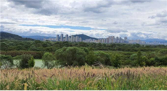 대단위 주택단지로 면적을 넓혀가고 있는 세종시. 생태적인 숨결이 살아있는 도시로 만들어 가자는 목소리가 높다.