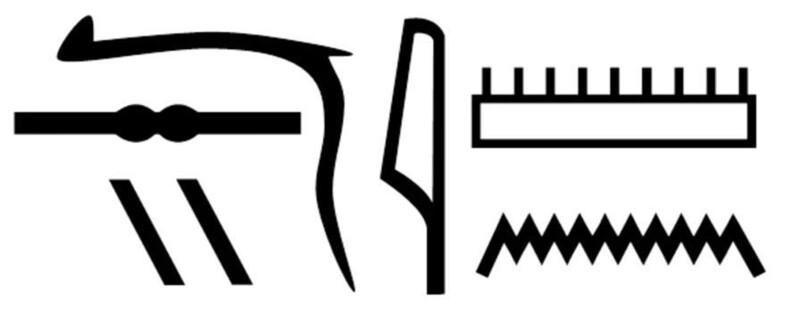 관에 적혀 있는 이집트 상형문자. '네시아문' 이름이다. 사이언티픽 리포트