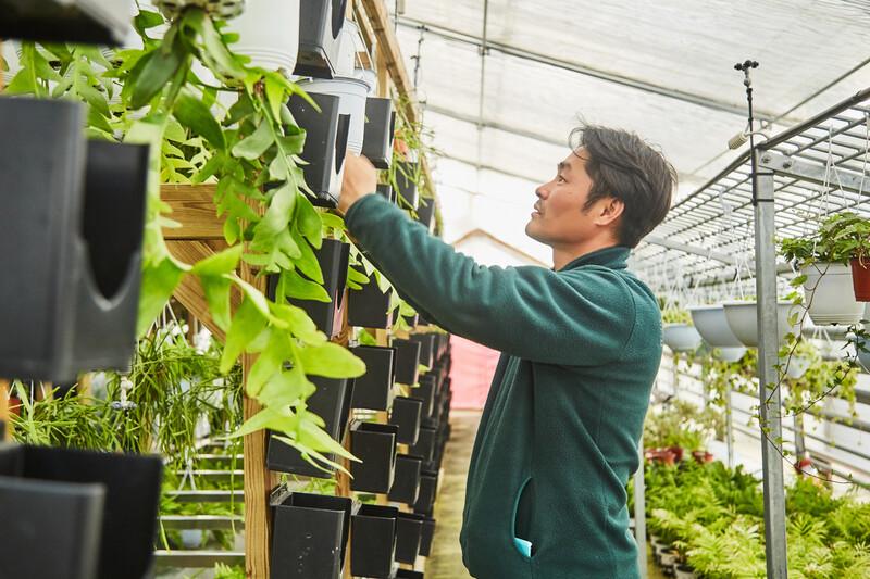 이정철 서울식물원 식물연구과장이 식물들을 돌보고 있다. 사진 경지은(스튜디오 어댑터)