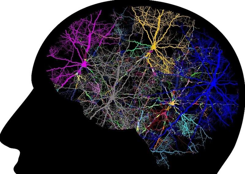 뇌에서는 하루에도 수천번의 생각이 떠올랐다 사라지는 것으로 추정된다. 픽사베이