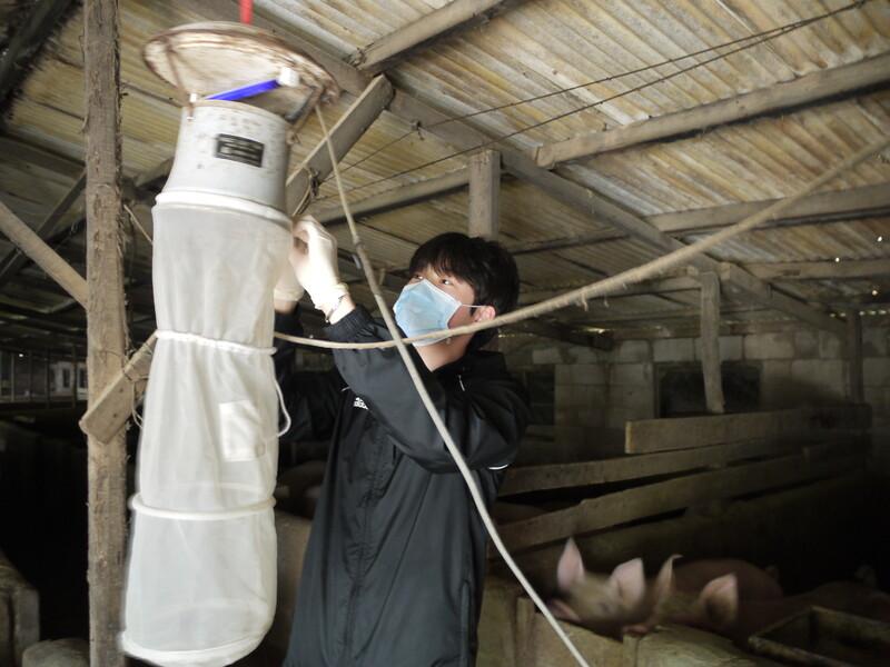 지난 8일 조세훈 고신대 기후변화 매개체 감시거점센터 연구원이 부산시 강서구의 한 돼지농가에 설치된 모기트랩에서 모기를 채집하고 있다.