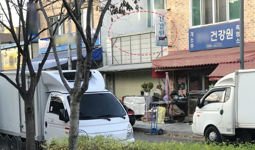 지난 8월 동물 학대 논란이 일었던 경북대 수의대가 '번식 실습견'을 대구시 칠성시장 한 건강원에서 구매한 것으로 드러났다. 동물해방물결 제공