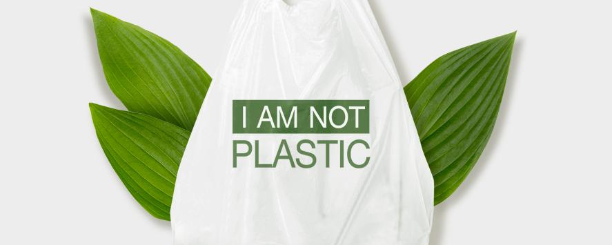 '생분해 플라스틱'은 여전히 자연으로 돌아가지 못한다