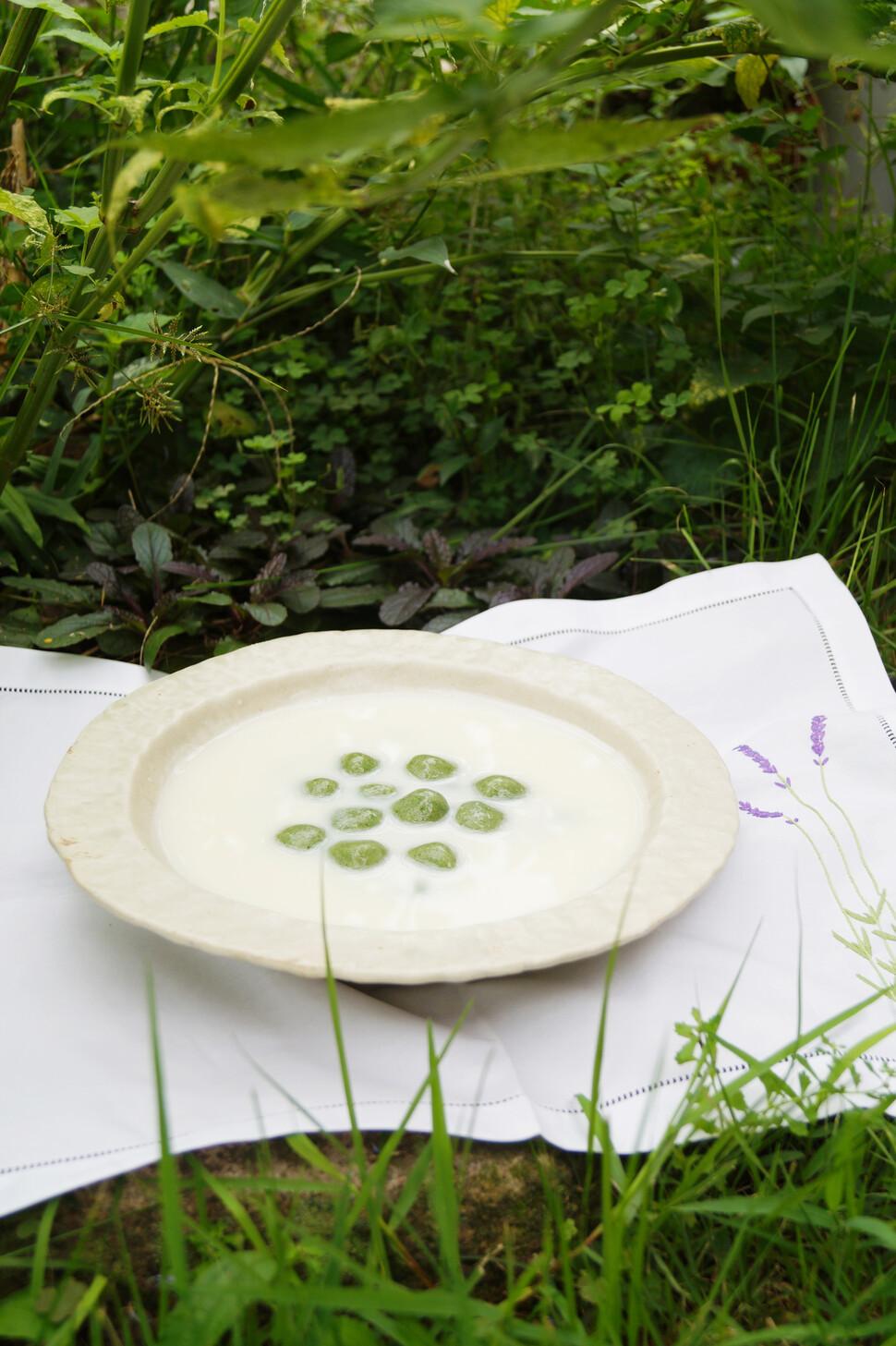 야생초요리가 권포근씨가 만든 환삼덩굴옹심이 요리