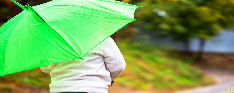후드득 비가 말 거네, 활짝 편 우산이 답하네