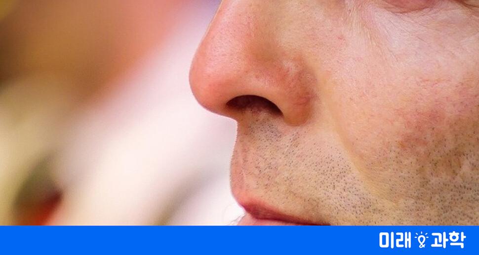 코 호흡에 숨어 있는 놀라운 건강 과학
