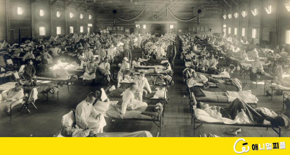 5천만 사망한 '스페인 독감'에서 코로나19를 읽는다