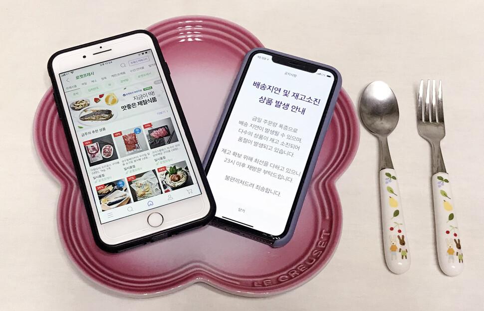 온라인 쇼핑몰, 주문 폭주에도 '울상'