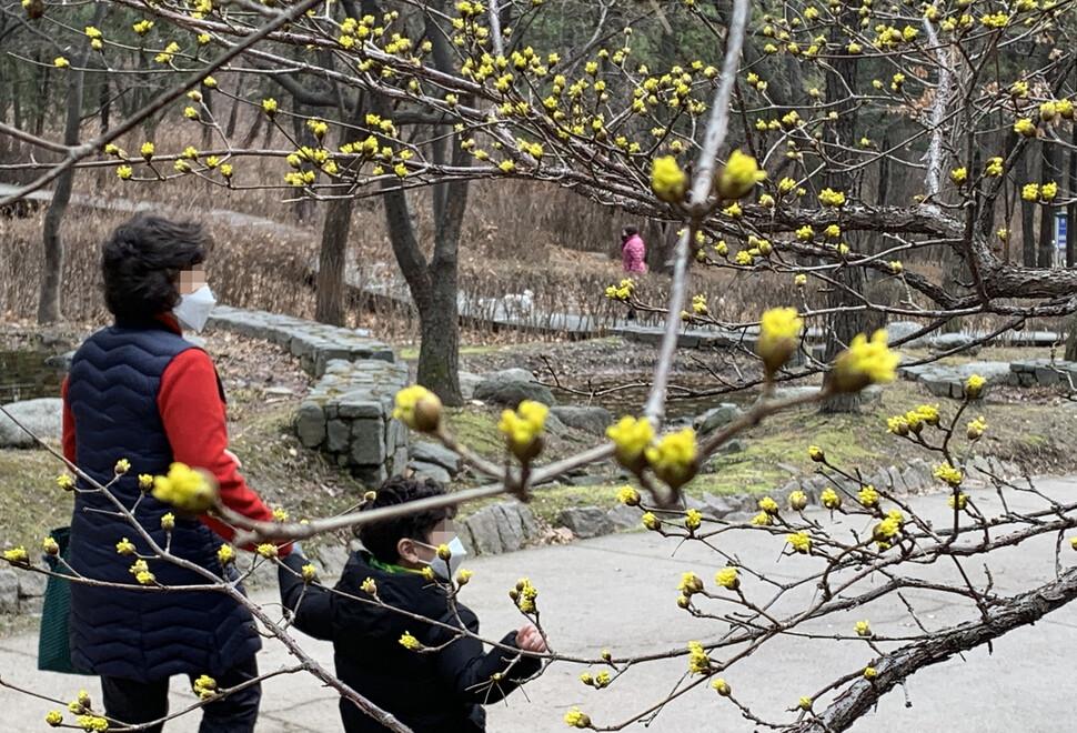 [한 장의 다큐] 그래도 봄은 오고 있다