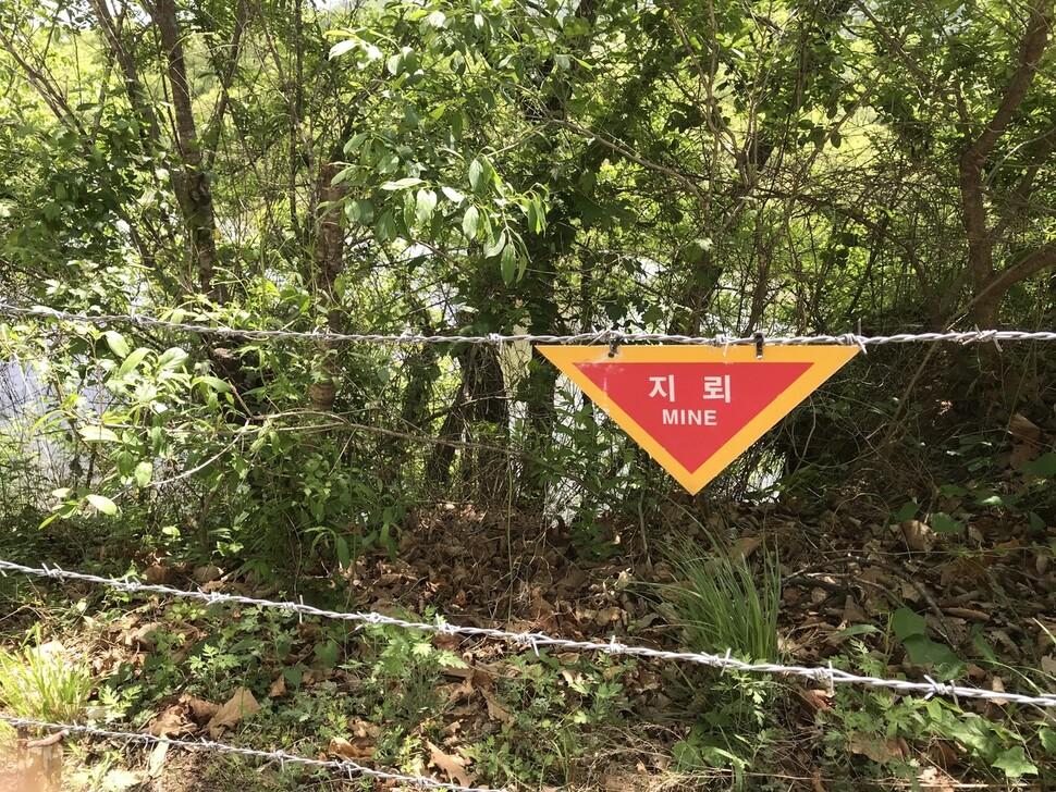 비무장지대 근처에는 지뢰 경고판이 곳곳에 있다. 권혁철 한겨레평화연구소장