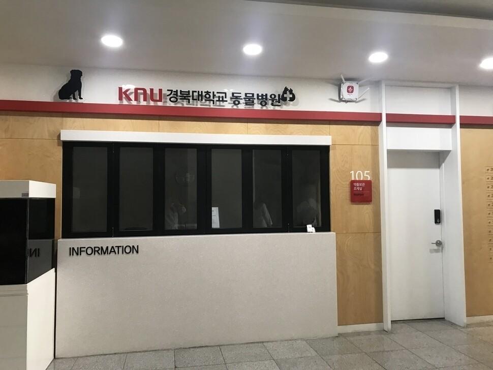 경북대 수의대.
