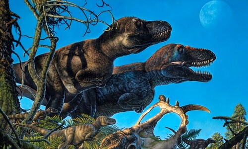 넉 달 밤 지속 북극에서 공룡은 번식도 했다