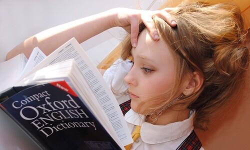 뇌의 기억 활동, 공부할때 보다 쉴때 20배나 더 왕성하다