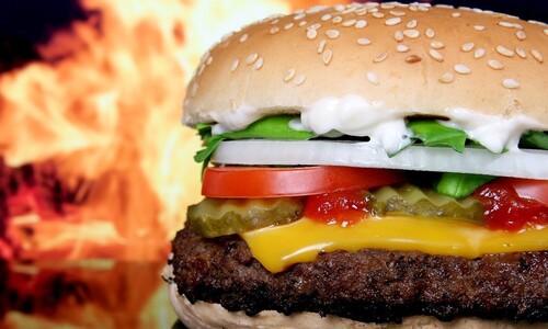 식물성 대체육과 고기의 영양 성분엔 결정적 차이가 있다