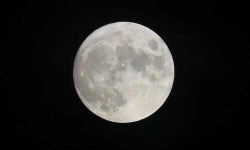 하얗게 차올랐다, 한가위 보름달