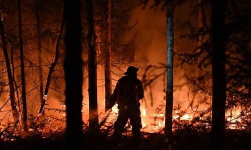 전 세계 산불로 인한 이산화탄소 배출량 8월 또 최고 기록