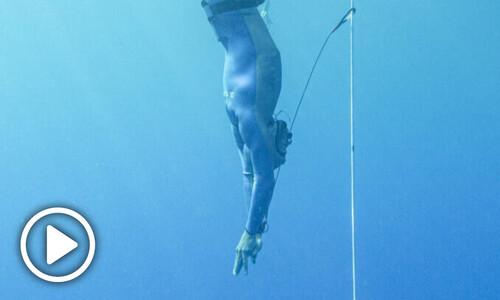 심장이 뛴다, 5.4초에 1번…물개 수준까지 간 '인간의 잠수'