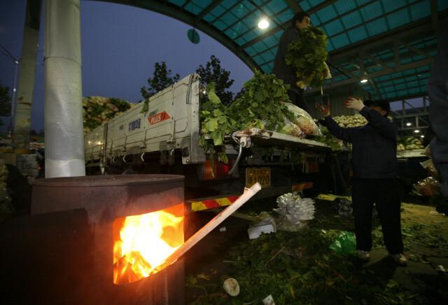 2009년 11월 새벽 서울 송파구 가락시장에서 상인들이 산지에서 올라온 김장용 무를 트럭에서 내리고 있다. 박종식 기자 anaki@hani.co.kr