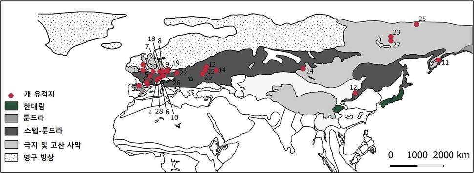 Ruinas de plantas y perros (punto rojo) en el apogeo de la última Edad de Hielo.  La mayoría de ellos son de las regiones de la tundra esteparia con un clima invernal severo.  Cortesía de Maria Latinen et al.  (2020)