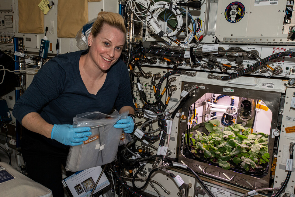 An experimental device for radish cultivation on the International Space Station.  Screws provided.