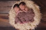 韓国、双子増加率3倍以上で世界最高レベル
