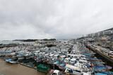 海はまだ真夏…台風14号「チャンスー」17~18日、済州・南海岸に直接影響か